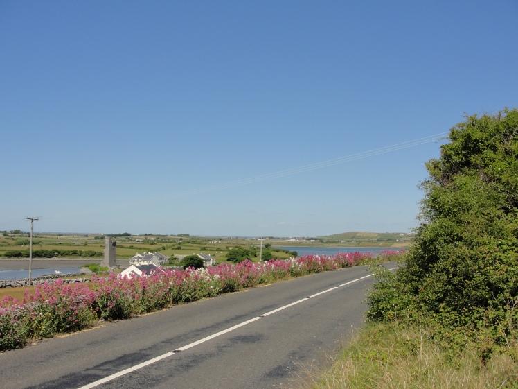 Estrada Irlanda